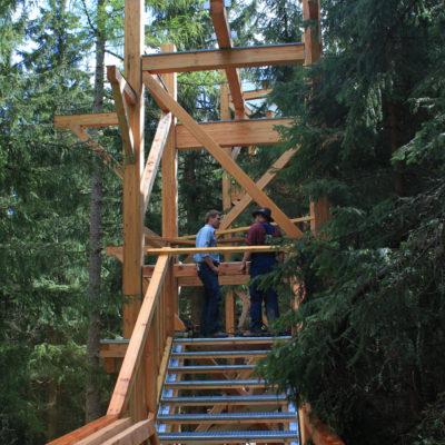 Konstruktion des Baumzipfelwegs